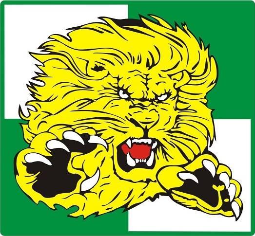 Włókniarz Częstochowa, logo klubu, żółty Lew na biało-zielonym tle