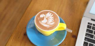 caffee art w kształcie łabędzia