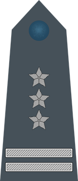 Pułkownik-oznaczenie na pagonie-quiz wojskowy