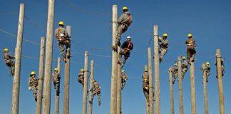 Elektrycy wchodzący na słupy w słupołazach, szkolenie wysokościowe
